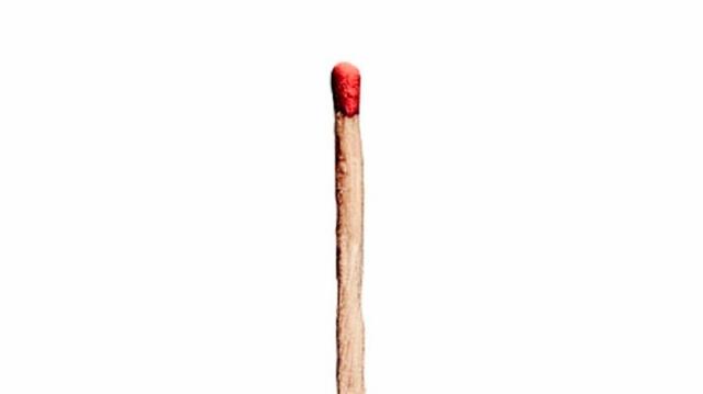 Rammstein revelan la portada y el tracklist de su nuevo álbum