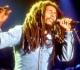 Bob Marley me enseñó a vivir