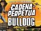 Cadena Perpetua y Bulldog se presentarán en la Argentina